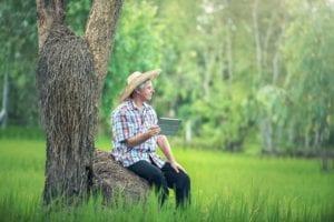 Kredyt dla rolnika pomoże w rozwoju gospodarstwa