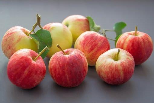 Mamy nową odmianę jabłoni