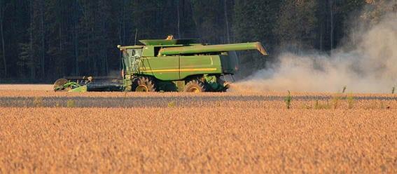 Rolniku – strzeż się pyłu!