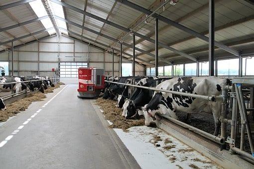 """""""Modernizacja gospodarstw rolnych 2018"""" – jak liczone są punkty?"""