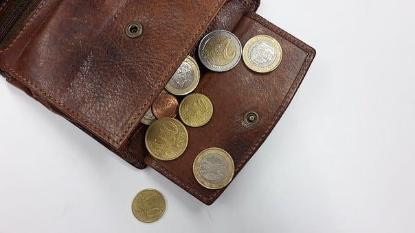 otwarty portfel z bilonem euro