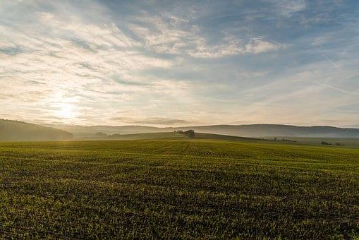 zielone pole , niebo, dal