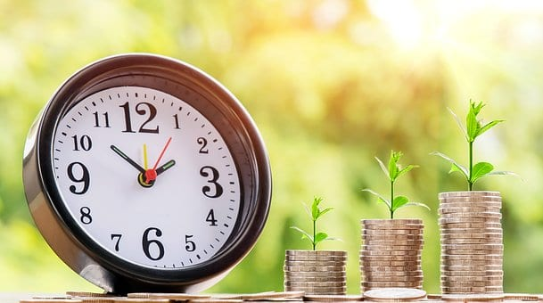 zegar z pieniędzmi na których wyrasta zeikony krzak
