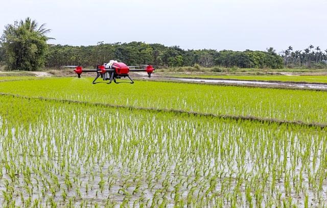 Dron i pole Fundusz Innowacji i Rozwoju Rolnictwa